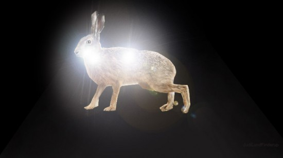 Hare-i-bil-lys_-stiltjek